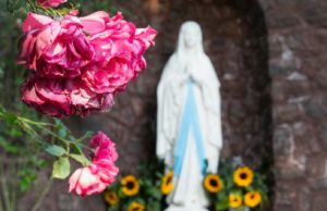 maria madre della chiesa, madonna di lourdes