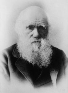 Evoluzione della specie e fede: come affrontare questo binomio? 1