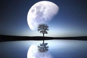 il lato nascosto della luna, califano