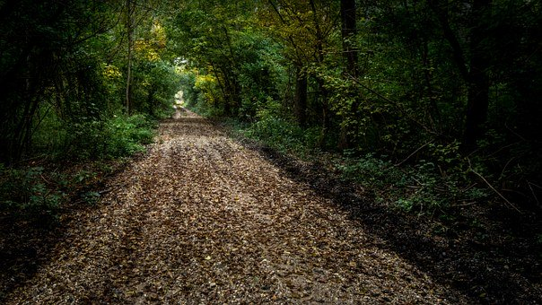 pellegrinaggio a piedi, natura